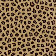 Stock Illustration of Leopard fur (skin) background or texture