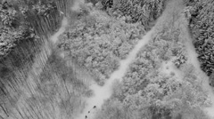 Crane shot of people walking on snow covered forest, Stuttgart, Stock Footage