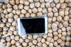 Plenty of walnuts with tablet pc - stock photo