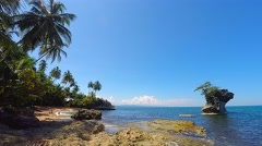 Island of Manzanillo,jungle and beach, Costa Rica Stock Footage