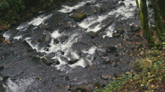 Shallow Rushing River Stock Footage