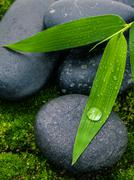 The River Stones spa treatment scene and bamboo leaves with raindrop zen like Stock Photos