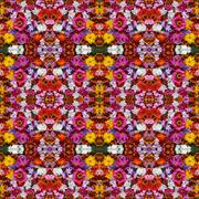 Background from flowers, effect of a kaleidoscope. Packing, advertizing, clot Stock Photos