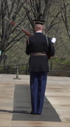 Arlington National Cemetery Honor Guard vertical HD Stock Footage