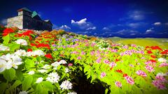 Beautiful landscape with flowers - stock illustration