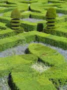 Green labyrinth Stock Photos