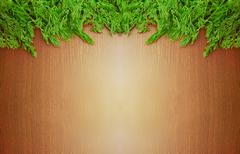 fresh  greenery on brown wood  table background. - stock photo