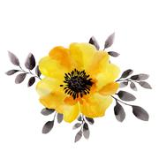 Watercolor illustrations of yellow flower isolated on white background Stock Illustration