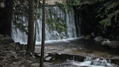Wild Waterfall Stock Footage