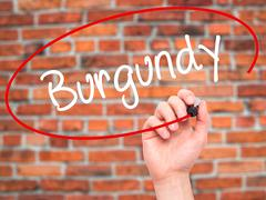Stock Photo of Man Hand writing Burgundy with black marker on visual screen.