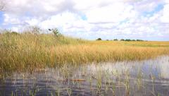 The airboat ride on Everglades National park - stock footage