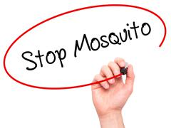 Man Hand writing Stop Mosquito with black marker on visual screen. - stock photo