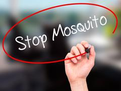 Stock Photo of Man Hand writing Stop Mosquito with black marker on visual screen.