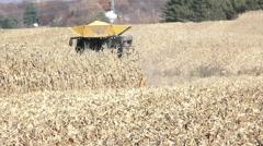 Wide shot of corn combine harvesting in field - stock footage