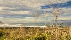 Stock Photo of The Oregon Coastline