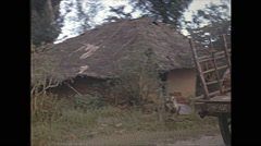 Vintage 16mm film, 1970, Ceylon, drive plate rural, passing oxen, thatch homes Stock Footage