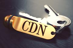 CDN - Bunch of Keys with Text on Golden Keychain - stock illustration