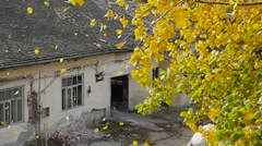 SLOW MOTION of autumn leaves rapidly falling over old ruined building Stock Footage