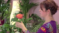 a florist manufactures a bouquet of roses - stock footage