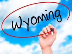 Man Hand writing Wyoming with black marker on visual screen - stock illustration