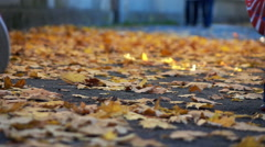 Couple jogging in autumn park, super slow motion, focus on legs Stock Footage
