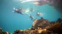 Kids Snorkelling over bright coral in Papau New Guinea Stock Footage