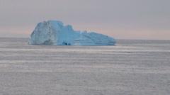 Whales in Antarctica - Antarctic Peninsula - Palmer Archipelago - Global Warming - stock footage