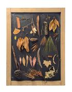 Stock Photo of Fall composition autumn leaf blackboard vintage