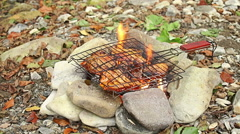 Preparing Grilled steaks on outdoor camping fire Stock Footage
