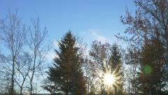 Sunrise Lens Flare Time lapse Trees Clouds River Forest Scenic Winter - stock footage