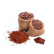 Chocolate with cacao, isolated Stock Photos