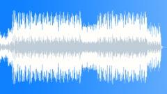 Stock Music of Hawaiian beach