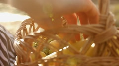 Fruit basket in the sun Stock Footage