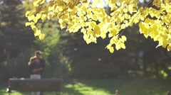 Sunlit tree branch autumn background with boy and girl hugging in slow motion Stock Footage