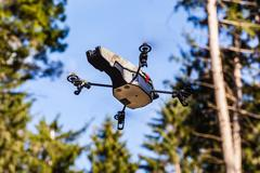 Scout drone in the wild Stock Photos