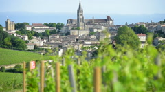 Landscape-Saint-Emilion, Aquitaine, France, Bordeaux Wineyard Stock Footage