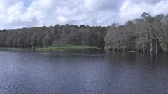 Aerial Florida lake and swamp-Vlog Stock Footage