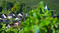 Champagne vineyards in the Cote des Bar area of the Aube department near to Vivi Stock Footage