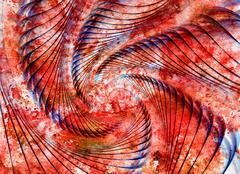 Stock Illustration of Abstract spiral shell on watercolor grunge background