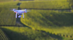 Flying utility drone over wineyard Stock Footage