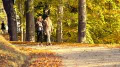 Walking at park in autumn Stock Footage