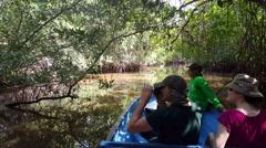 Cruising the mangroves of Juan Venado Island Nature Reserve Stock Footage