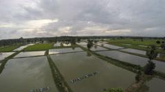 Aerial shrimp farm bog farmland 4k - stock footage