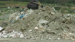 Abandoned waste deposit. Environmental pollution problem. Nature preservation Stock Footage