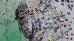 Aerial view of crowd enjoying at beach, Chile Stock Footage
