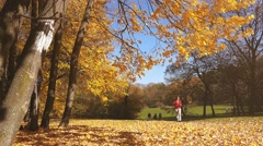 Woman walking in the park, autumn leaves falling Stock Footage