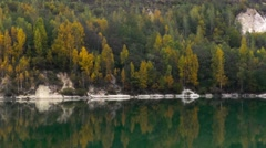 Beautiful forest reflecting on calm lake shore Stock Footage