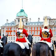 In london england horse and cavalry for    the queen Stock Photos