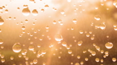 Beautiful Rain Drops in Slow Motion, Sun Shine, Looped animation. Stock Footage