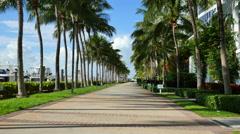 Miami Beach Marina motion video 3 Stock Footage
